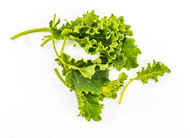 ケールの芽(キャベツ)。素朴で健康的な面を持つサラダ。孤立した