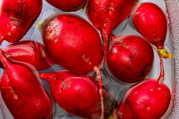 Экологический редис (красный редис - рабанитос) интенсивного красного цвета. вымойте в емкость с водой.