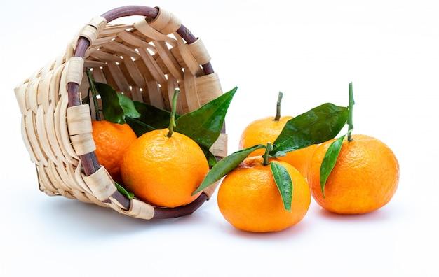 Свежие и сырые мандарины с зелеными листьями в деревенской плетеной корзине. изолированный