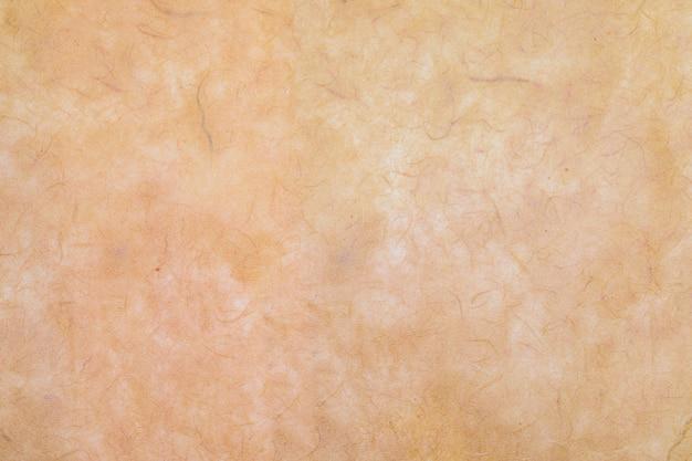目に見える有機繊維を使用して手で作られた紙のテクスチャ