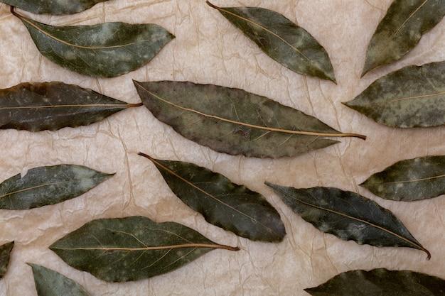芳香族のベイの葉。