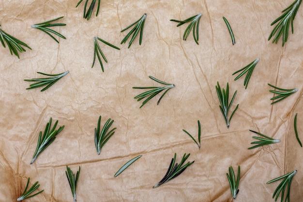 ローズマリーの枝と葉。