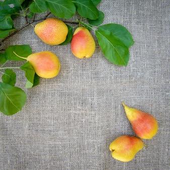 Спелые желто-красные груши в плетеном блюде на фоне мешковины