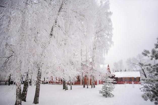 冬の公園で雪に覆われた木