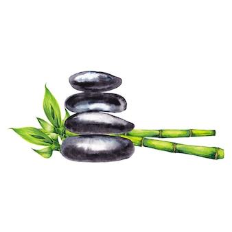 禅スパの小石と竹の緑の茎と芽。水彩画。