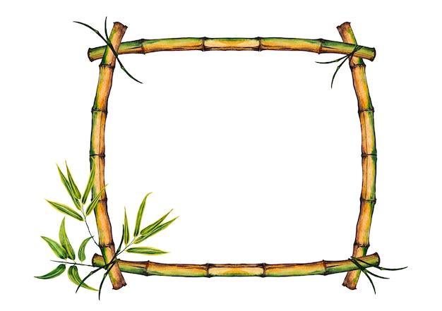 カラフルな現実的な竹の茎と葉を持つフレーム。水彩イラスト。