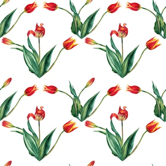 Бесшовный фон из реалистичных красных тюльпанов на стеблях с листьями в тройки. акварельные иллюстрации