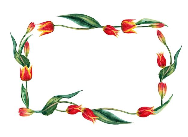 Прямоугольная рамка из реалистичных красных тюльпанов на стеблях с листьями. акварельные иллюстрации