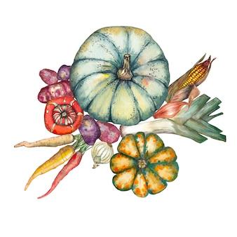野菜のミックス。カボチャ、トウモロコシ、タマネギ、ニンジン、ジャガイモ。水彩イラスト。
