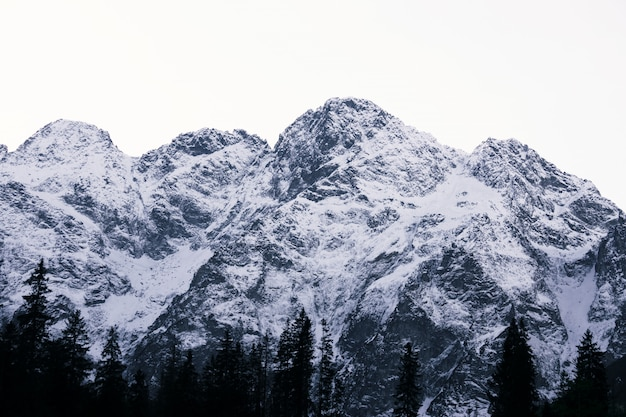 Гора снежной шапки треугольной формы в польских татрах