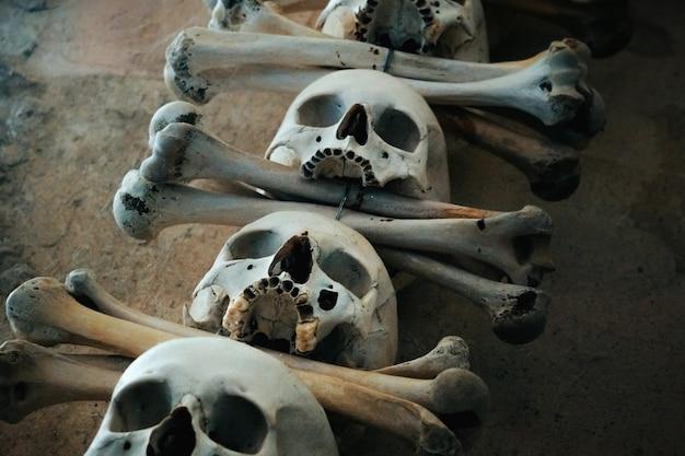 人間の頭蓋骨と骨。人の大量埋葬