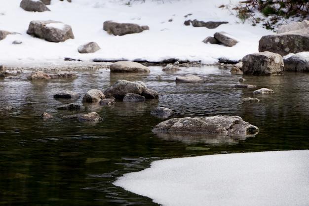 氷の上の石。冬の風景。湖の冷たい水