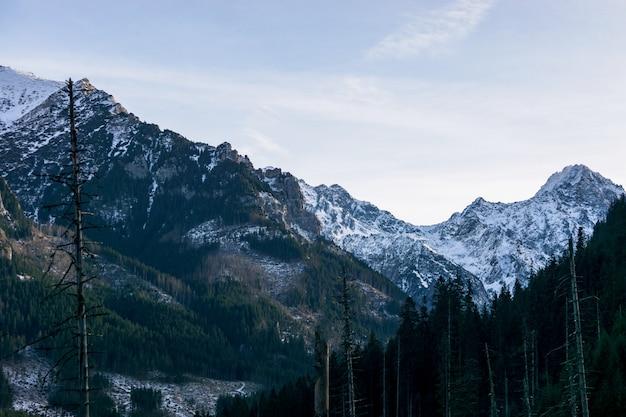 青い空を背景に雪をかぶった山。自然