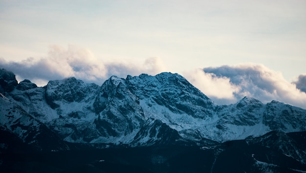 Высокие горы под снегом зимой. панорама