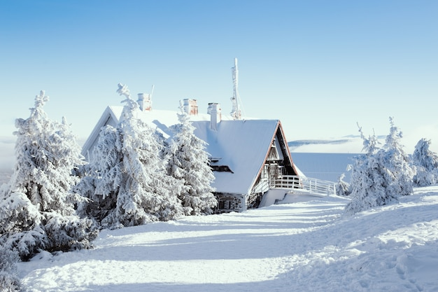 Зимний дом со снежным лесом