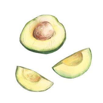 Нарезанный сочный авокадо, жирная зеленая бескостная акварель