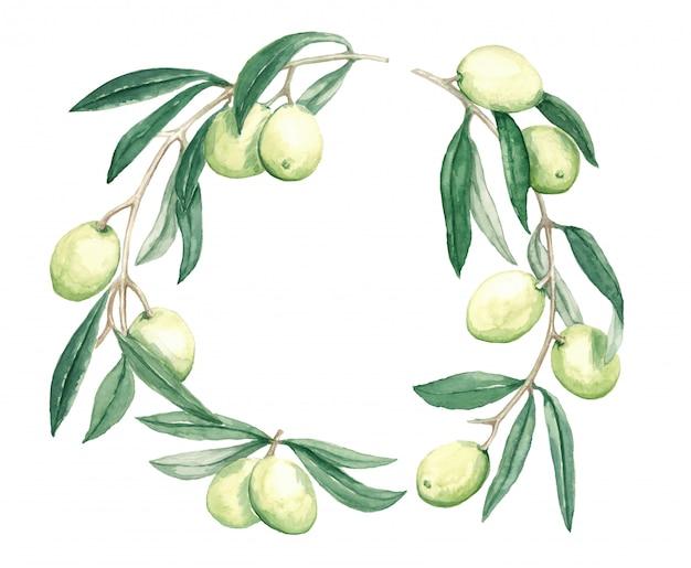 果物と葉の水彩イラストと装飾的な花輪支店オリーブ