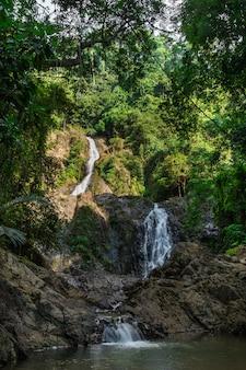 熱帯雨林のカスケード滝