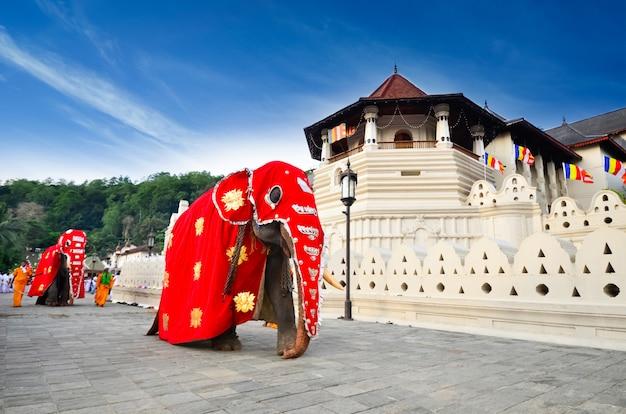 神聖な歯の遺物の寺院、キャンディ、スリランカ