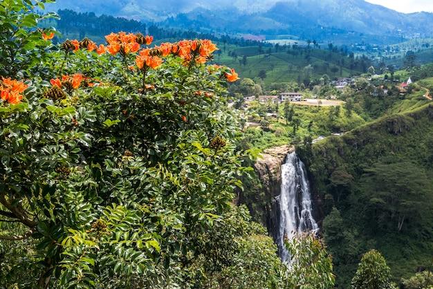 デボンの滝、スリルナカ