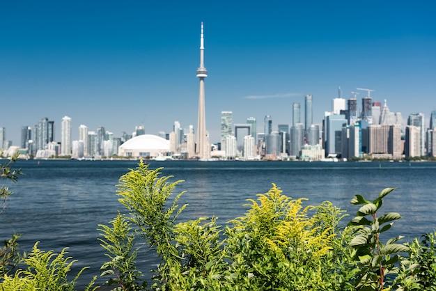 Горизонты города торонто, онтарио, канада