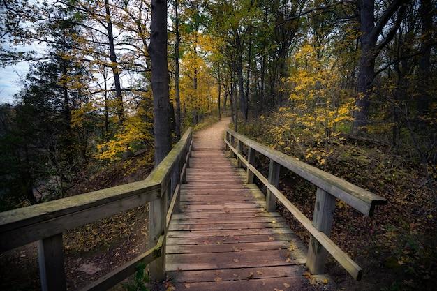 カナダの美しい秋の秋の風景