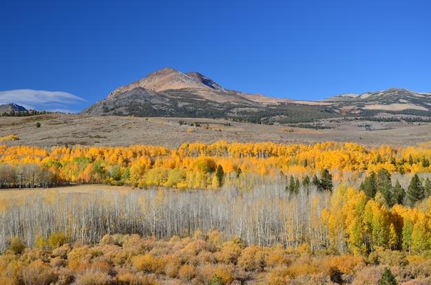 美しい秋の風景