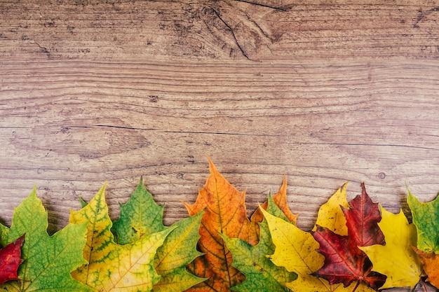 素朴な木製のテーブルにカラフルな秋のカエデの葉と秋の背景。感謝祭の休日の概念。緑、黄色、赤の紅葉。上面図。