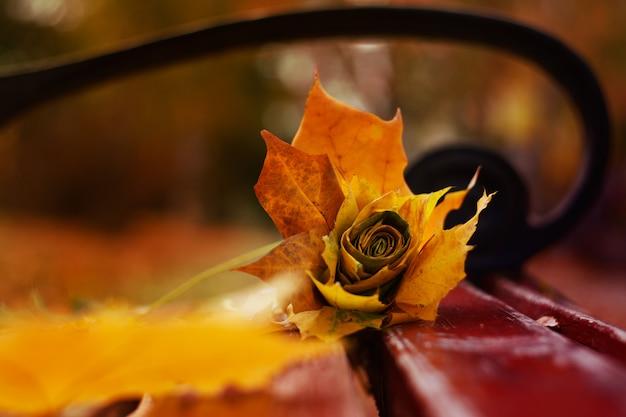 Красивый яркий цветок розы из осенних листьев, лежит на скамейке в парке