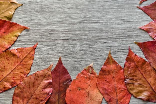 秋の組成物。秋のカエデで作られたフレームは、灰色の背景に残します。トップビュー、コピースペース