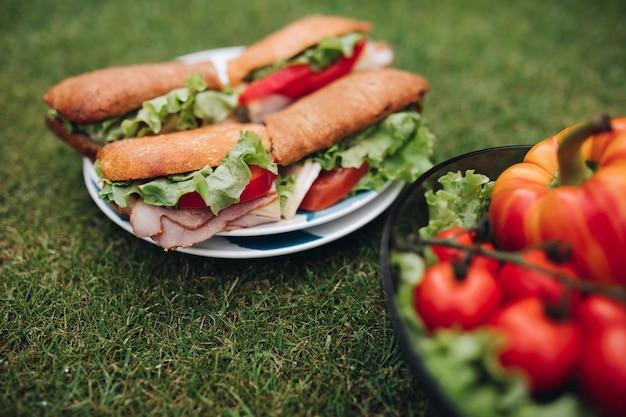 野菜を使った美味しいサンドイッチのクローズアップ。草の上にある健康的なエコ野菜のボウル。
