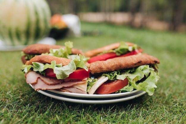 緑の草に食欲をそそる新鮮なサンドイッチとクローズアップの大皿