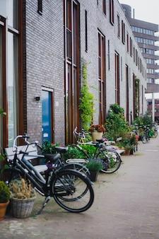アムステルダムの居心地の良い中庭、ベンチ、自転車、浴槽の中の花。