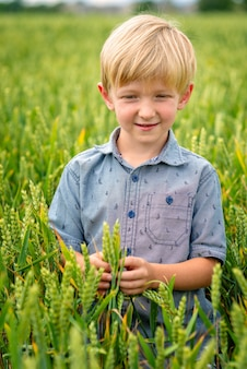 Маленький белокурый мальчик в поле злаков.