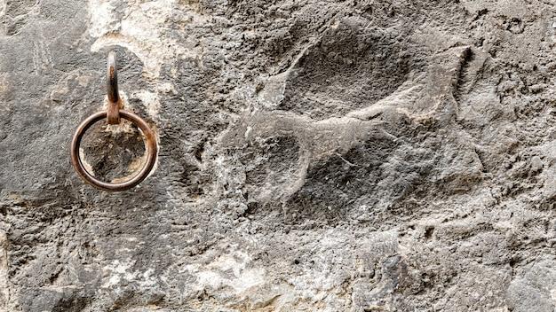 旧市街通り、ジュネーブ、スイスの壁に古代の馬の指輪