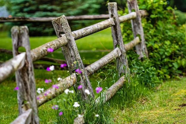 緑の牧草地に古い木製のフェンスのクローズアップ