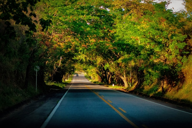 道路を旅する