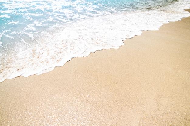 曇りの日の波と海岸
