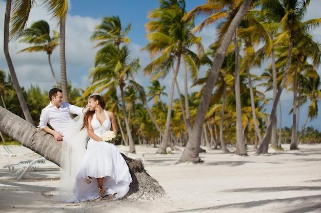 熱帯のビーチでヤシの木に座っている新郎新婦