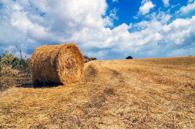 キプロスのフィールドで干し草の山