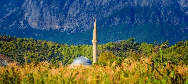 山の背景にトウモロコシ畑のモスク。トルコ、キリッシュ。