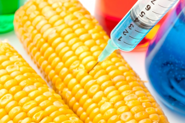 トウモロコシに液体を注入するシリンジ