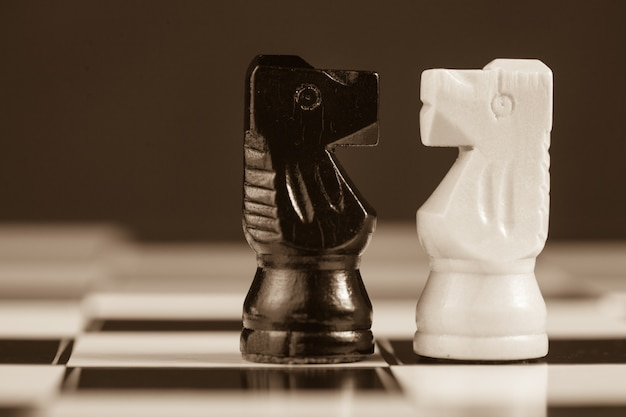 Два шахматных рыцаря, обращенные друг к другу
