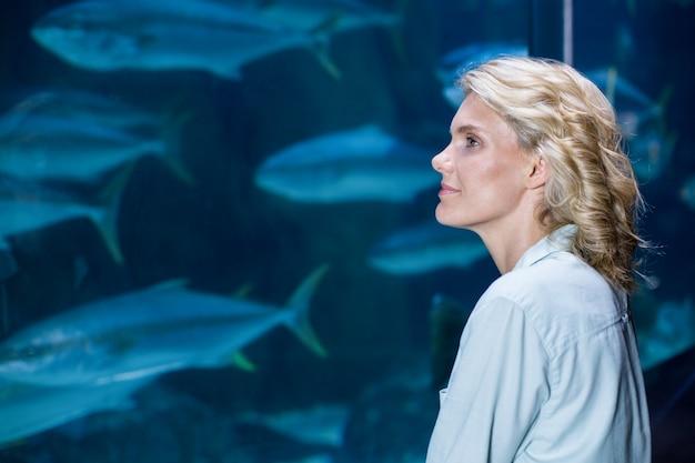魚のタンクを見てかなりブロンド