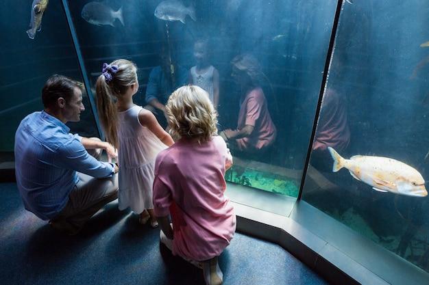 魚の水槽を見ている家族