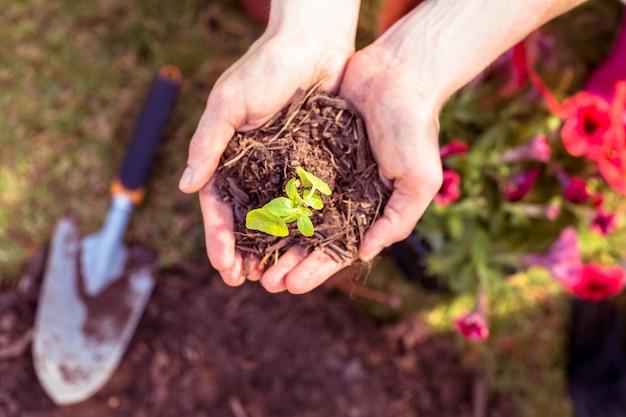 庭に植える女性