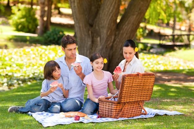 かわいい家族は公園でピクニックをしています