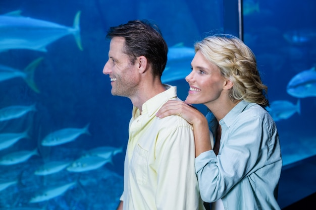 魚のタンクを見ている幸せなカップル