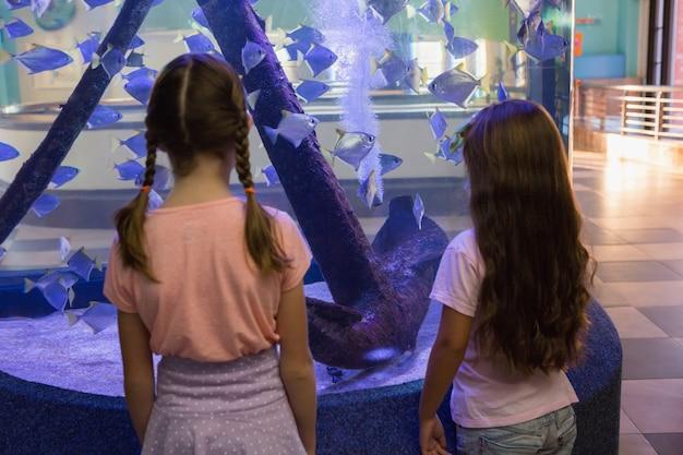 魚の水槽を見ているかわいい子供