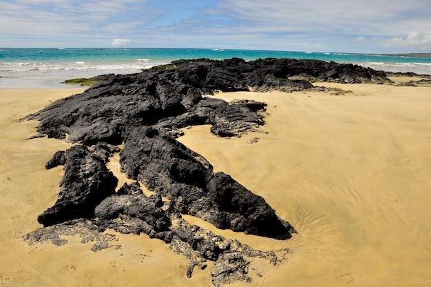 ビーチの溶岩